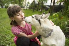 La fille veut embrasser le chien Photographie stock libre de droits