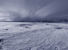 La fin de l'hiver Images stock
