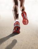 La fin de vue arrière vers le haut des chaussures de course de jambes femelles sportives fortes folâtrent pulser de femme Photos stock