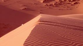 La fin rouge de sable haute et sac de déchets vole banque de vidéos