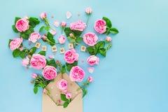 La fin vers le haut de la disposition créative avec les fleurs roses de thé rose, feuilles volent Photographie stock