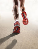 La fine di retrovisione sulle forti scarpe da corsa femminili atletiche delle gambe mette in mostra pareggiare della donna fotografie stock
