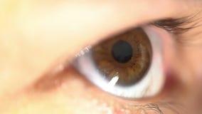 La fine estrema femminile dell'occhio umano sull'occhio frusta l'anatomia spaventata d'apertura e di chiusura di lampeggiamento d video d archivio
