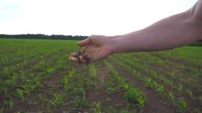 La fine su della mano maschio degli agricoltori tiene una manciata di terra asciutta e controlla la fertilità del suolo sul campo archivi video