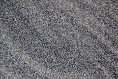 La fine su di un mucchio dei semi di papavero raccolti freschi si è sparsa in ciotola, pronta per l'essiccamento, foto macro Ingr Fotografia Stock Libera da Diritti
