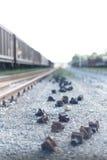 La fine sul colpo stretto di un metallo ferroviario fissa i clos a terra fotografia stock libera da diritti