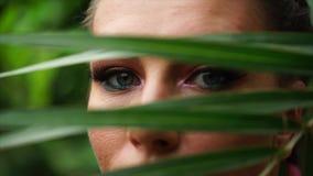 La fine sul punto di vista di bella giovane donna osserva dietro la foglia di palma stock footage