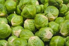 La fine sulla macro di иrussels verde fresco germoglia per la vendita su aperto Immagini Stock Libere da Diritti