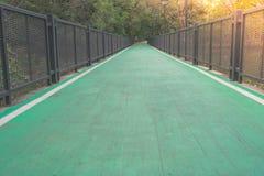 La fine sulla pista ciclabile verde vuota fiancheggiata con l'acciaio recinta il parco Fotografia Stock Libera da Diritti