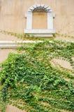 La finestra accantona lo stile europeo Fotografia Stock Libera da Diritti