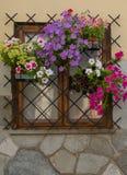 La finestra con i fiori e la griglia Fotografia Stock