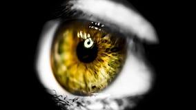 La finestra dell'anima fotografia stock libera da diritti