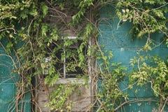 La finestra segreta Immagini Stock