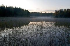 La Finlande 2009 Saima 5 Image stock