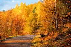 La Finlande : Couleurs d'automne Image libre de droits