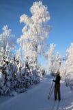 La Finlande : Ski de pays en travers Photographie stock libre de droits