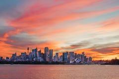 La firma di Sydney con il cielo tropicale Immagini Stock Libere da Diritti