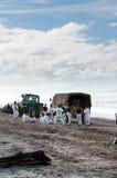 La flaque de pétrole de Rena nettoient des ouvriers Photos libres de droits