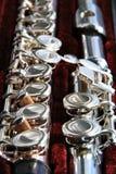 La flauta desensamblada en un caso Fotografía de archivo