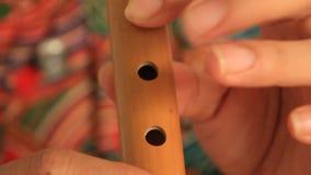 La flauta que sopla de la muchacha almacen de video