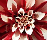 La fleur abstraite Photos libres de droits
