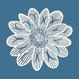 La fleur Adonis, laser la fleur coupée, calibre pour couper, l'élément de design de carte, cadeau la Saint-Valentin, lettre d'amo photos libres de droits