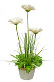 La fleur artificielle Images libres de droits