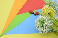 La fleur artificielle sur le fond orange, rouge, bleu et vert donnent le concept romantique de regard avec la coccinelle deux Photos libres de droits