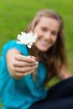La fleur blanche s'est retenue par un jeune femme attirant Image stock