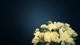 la fleur blanche sur le fond noir avec l'éclairage au centre et le vintage modifient la tonalité, copyspace Photographie stock