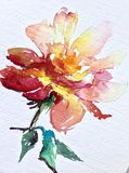 La fleur colorée de fond d'art d'aquarelle s'est levée Image stock