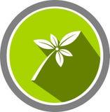 La fleur décrit le logo et le calibre illustration de vecteur
