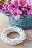 La fleur d'Alstroemeria a généralement appelé le lis péruvien ou le lis de Image libre de droits