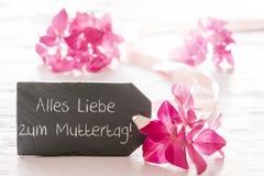 La fleur d'hortensia, Muttertag signifie le jour de mères heureux Images stock