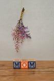 la fleur de jour donne à des mères le fils de momie à Photo libre de droits