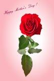 la fleur de jour donne à des mères le fils de momie à Bouquet des roses Images stock