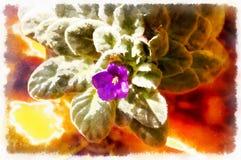 La fleur de lis de Violett avec l'effet d'aquarel, en couleur chaude modifie la tonalité illustration stock