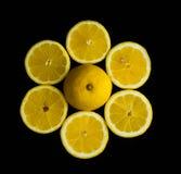 La fleur du groupe de citron du citron frais a coupé sur la table en verre Photo stock
