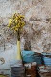 La fleur jaune dans un argile en céramique bleu de vase roule, des plats images stock