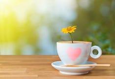 La fleur jaune dans une tasse de café sur la table en bois avec la lumière Photos stock