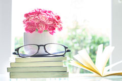 La fleur rose fraîche d'oeillet avec le fond de livres, étable de la vie Image stock