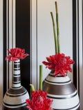 La fleur rouge dans le vase images libres de droits