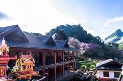 La fleur sur Chiang Mai Image libre de droits