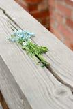 La fleur sur la balustrade Photos stock