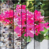 La fleur triangulée et abstraite shutters le fond Images stock