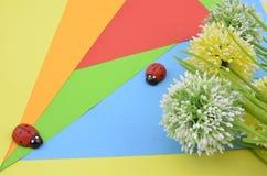 La fleur verte, blanche et jaune sur le fond orange, rouge, bleu et vert donnent le concept romantique de regard avec la coccinel Photographie stock libre de droits