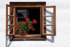 La flor adornó la ventana rural Foto de archivo