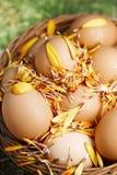 La flor adornó los huevos de Pascua en cesta marrón Foto de archivo