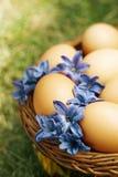 La flor adornó los huevos de Pascua en cesta marrón Imagenes de archivo