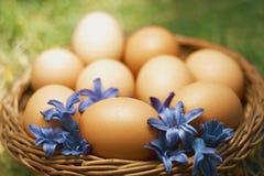 La flor adornó los huevos de Pascua en cesta natural Fotografía de archivo